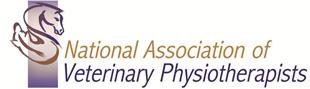 NAVP Access logo