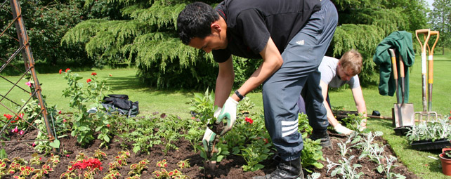 horticulture amp landscaping   writtle university college
