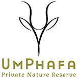 UmPhafa Private Nature Reserve