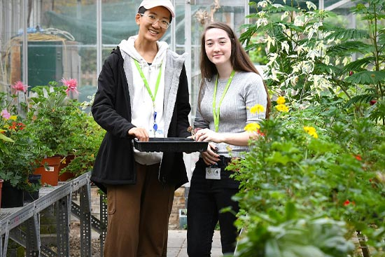 Horticulture Undergraduate Programmes - 1:1 Online Session with an Academic