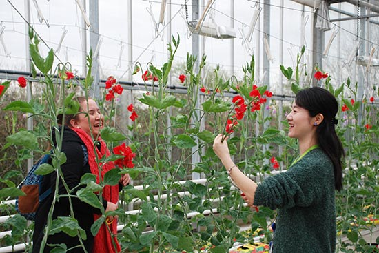 Horticulture Higher Education Programmes Webinar
