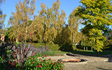 A College garden during Autumn