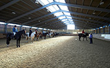 One of the equine areas